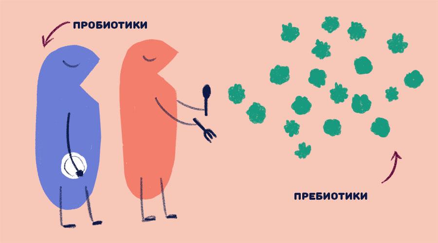 пробиотики помогают