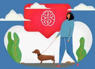 hodba i mozg