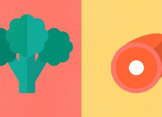 vegetariancy vs mjasoedy