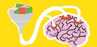 kak zastavit mozg rabotat luchshe vivavita vitajournal