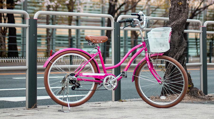 velosiped pod sakuroj